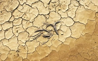 Water Drought